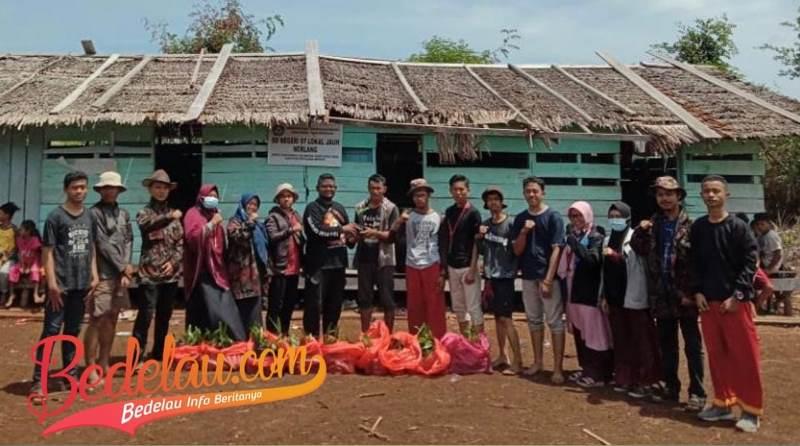 200 Bibit Unggul Pinang Batara Disalurkan Kepada Masyarakat Pedalaman Nerlang Secara Gratis